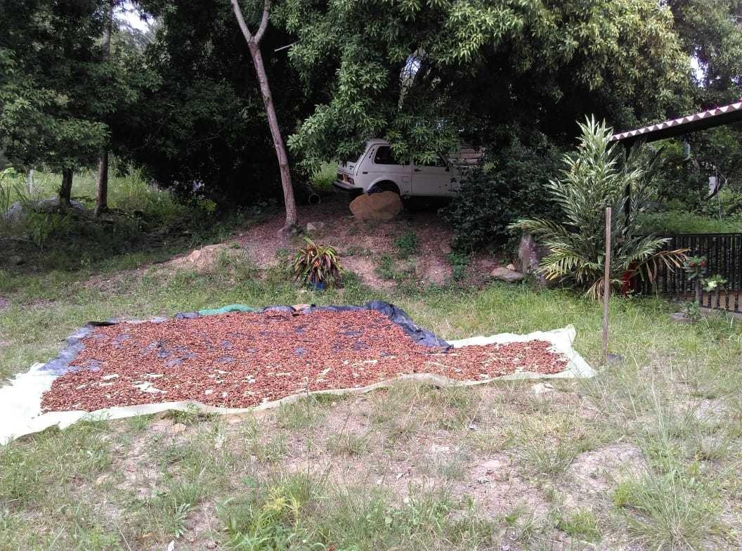 finca viota 26mil metros con cultivos casa y quebrada, cerca