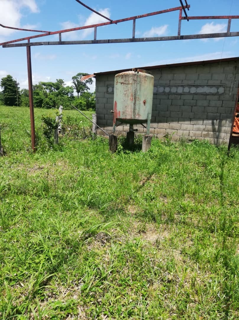 finca/granja 4 hectareas a 6 km pedrera