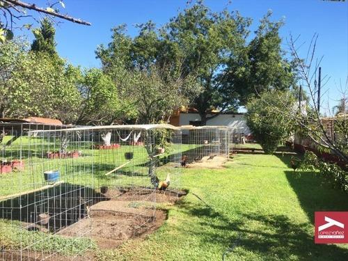 finca/rancho en venta en colonia hidalgo