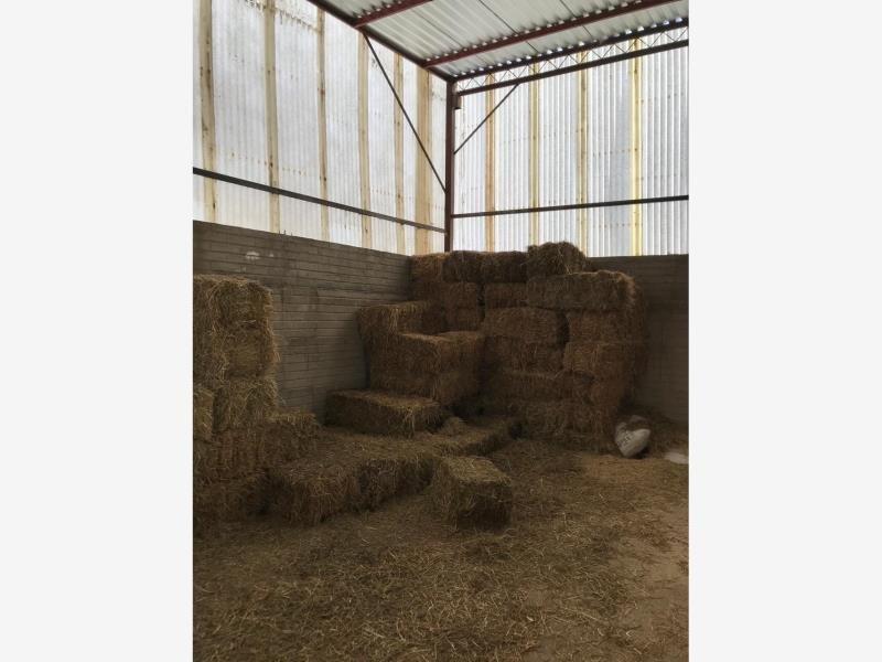 finca/rancho en venta en morcillo