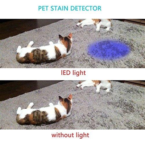 findway 5 uv ultra violet blacklight 9 led linterna antorcha
