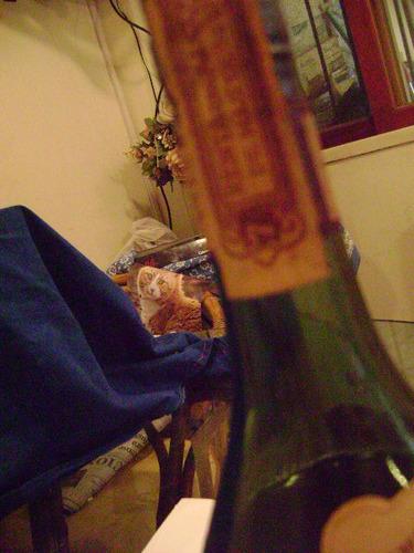 fine brandy torres, 5 years old, vsop- de mas de 50 anios