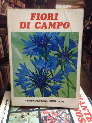 fiori di campo. flores campo. italiano