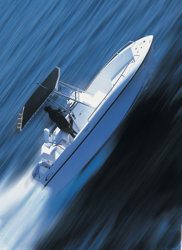 fishing 21 + 115hp  4 tempos ñ sea creast flyfish 215 19