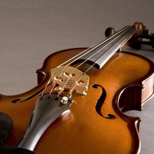 fishman micrófono violín modelo v-300 - importador oficial
