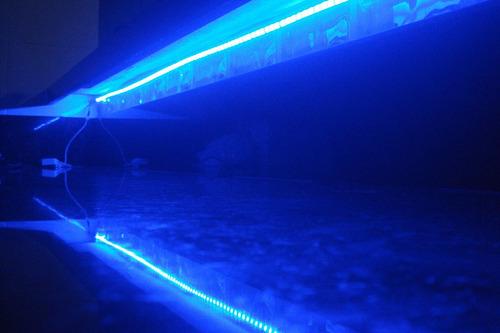 fita de led smd 5050 azul super brilho  ip 65 60 leds/m