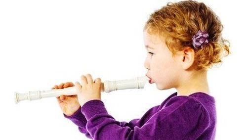 flauta dulce con estuche y palito curso colegio aprendizaje