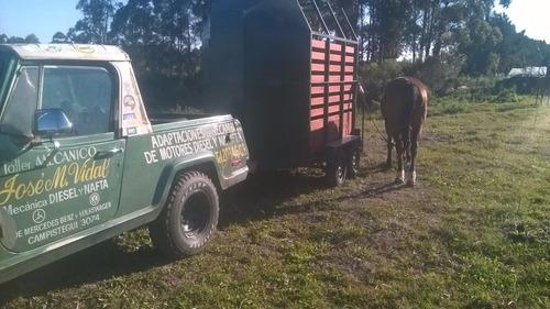fletes traslados de caballos y otros animales