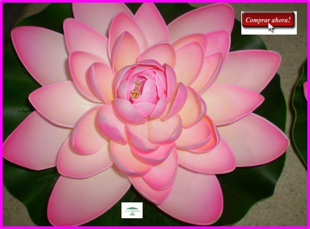 Magnífico Páginas De Colores De Flores Ideas - Páginas Para Colorear ...