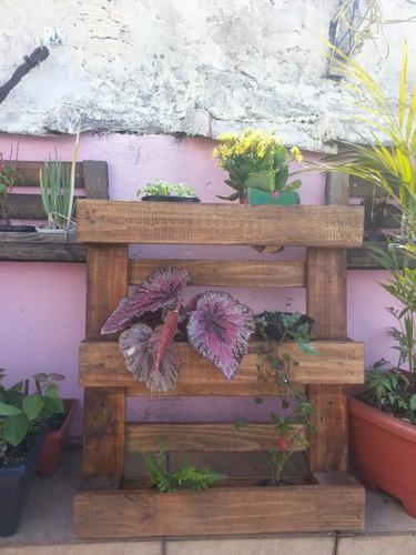jardim vertical venda: Jardineira Em Pallet Jardim Vertical – R$ 159,00 em Mercado Livre
