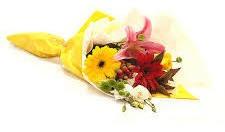 floreria los andes - entrega a domicilio