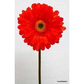 Flores Artificiales- Gerbera Roja