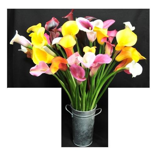 flores calas de colores, bulbos japoneses