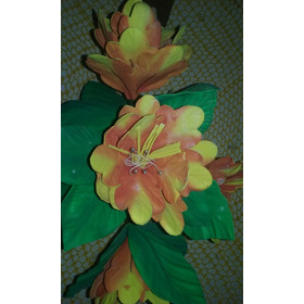 Flores De E.v.a