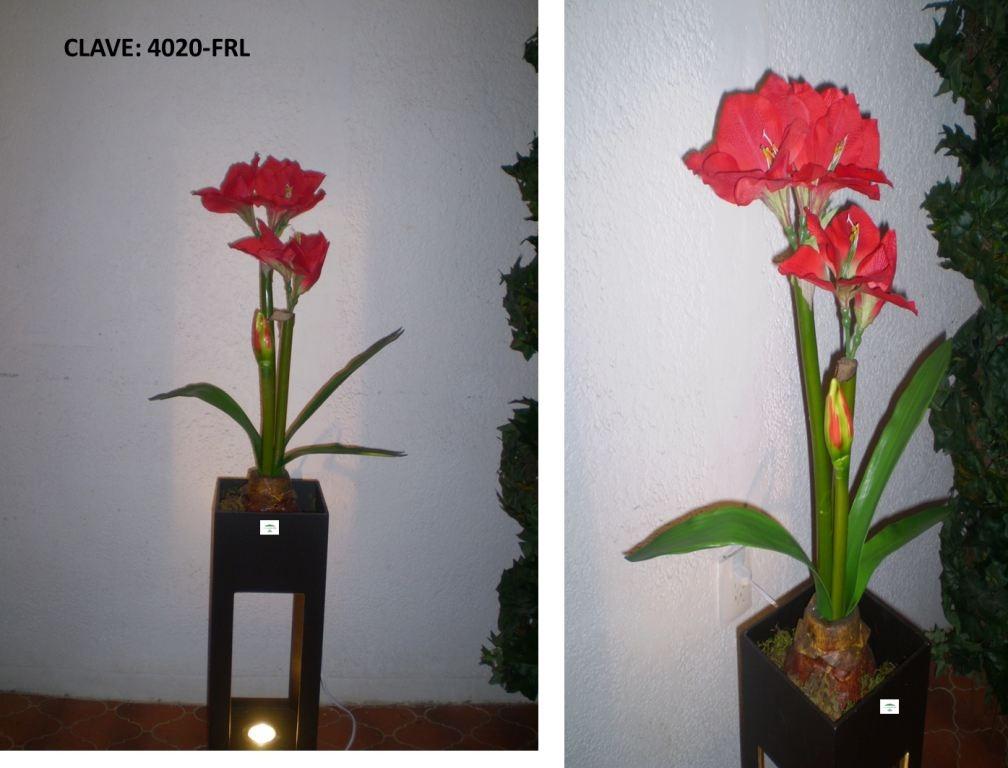 Flores en maceta y plantas daa 1 en mercado libre for Plantas en macetas