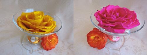 flores eternas (preservadas) de varios colores y diseños