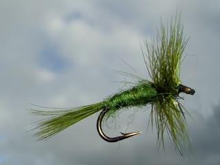 fly cast - pesca con mosca