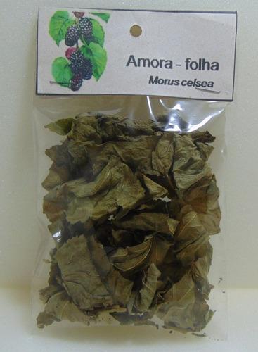 folha de amora - 4 pacotes