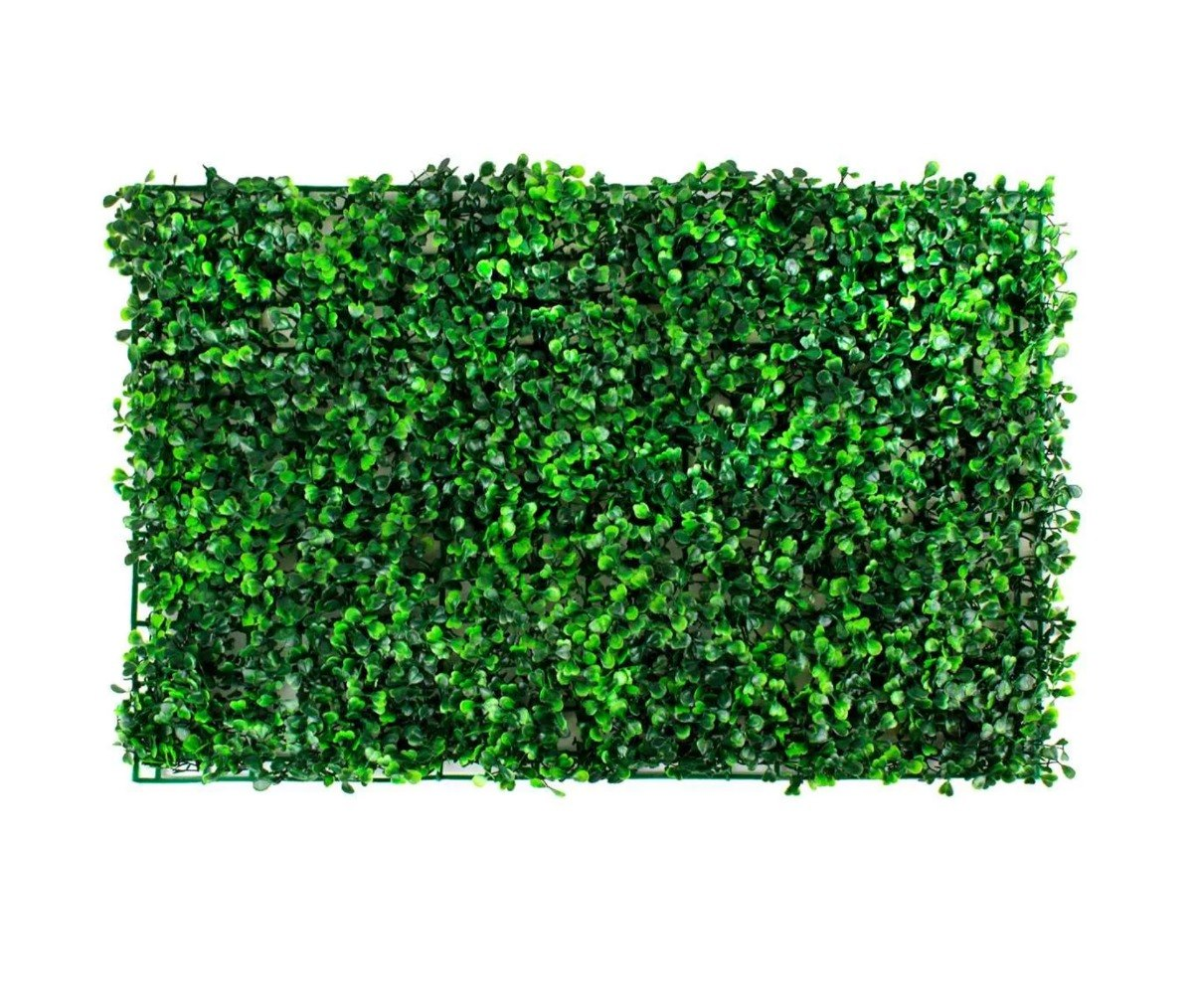 Follaje artificial muro verde jardin plantas 60x40 past01 for Plantas jardin vertical
