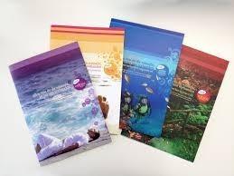 folletos full color frente y dorso x 5000