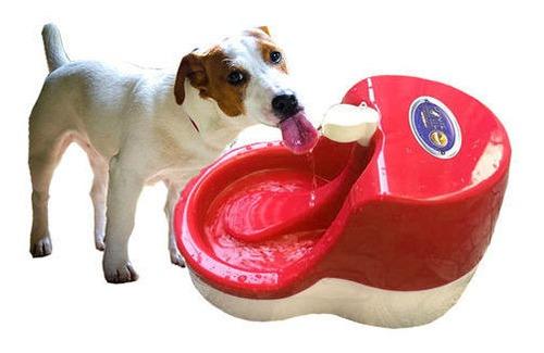 fonte de água bebedouro furacão pet cães e gato 110v rosa