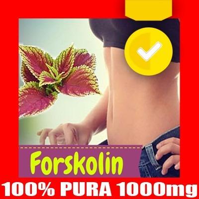 forskolina forskolin quemador 30 dias adelgazar y libro