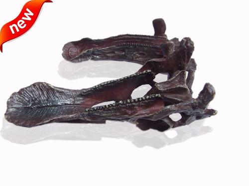 fosil craneo hadrosaurio pico pato dinosaurio paleontologia