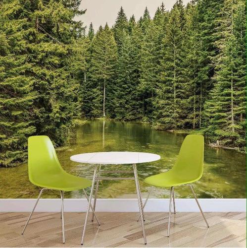 foto mural bosques