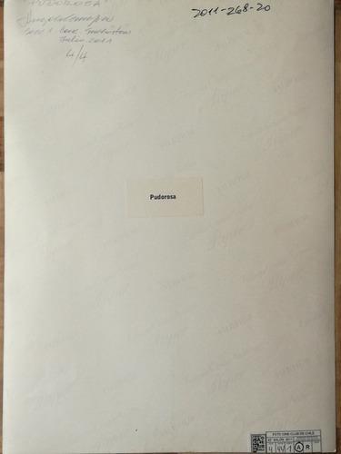 fotografía,  caballo marino  autor  angelo canepa,  1976.