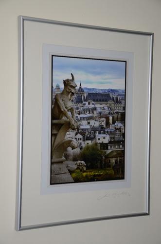 fotografía de gárgolas de la basílica notre dame de parís