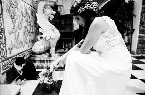 fotografo profesional- 15años - bodas -infantiles-filmación