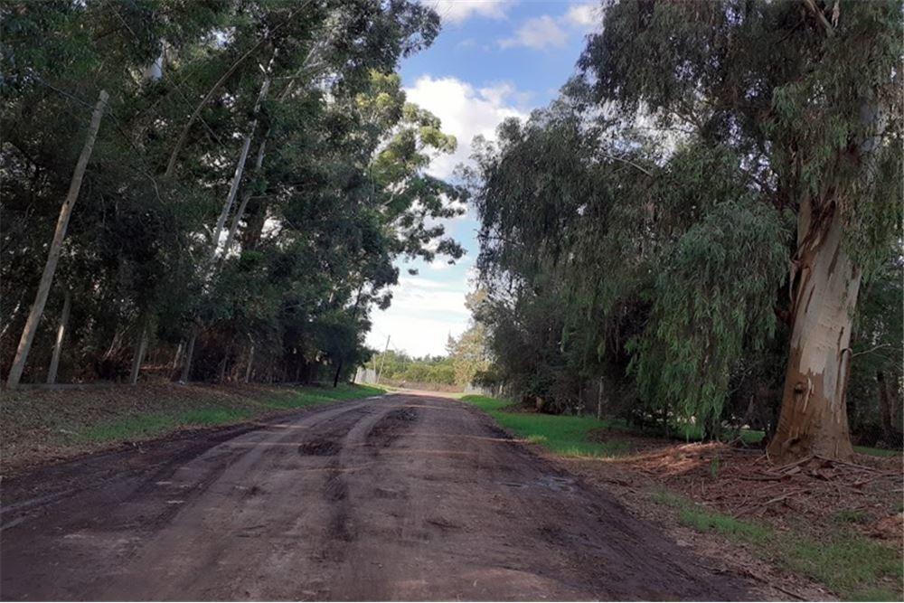 fracción de 3.6 hectáreas en venta. abasto.