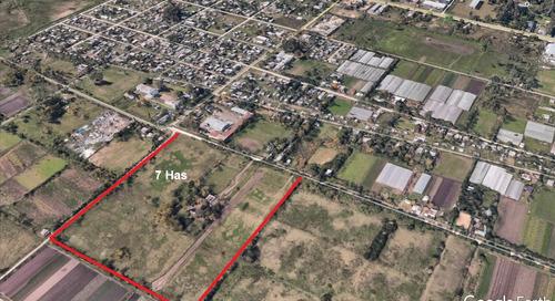 fracción en venta - 515 entre 161 y 163 - 7 hectáreas