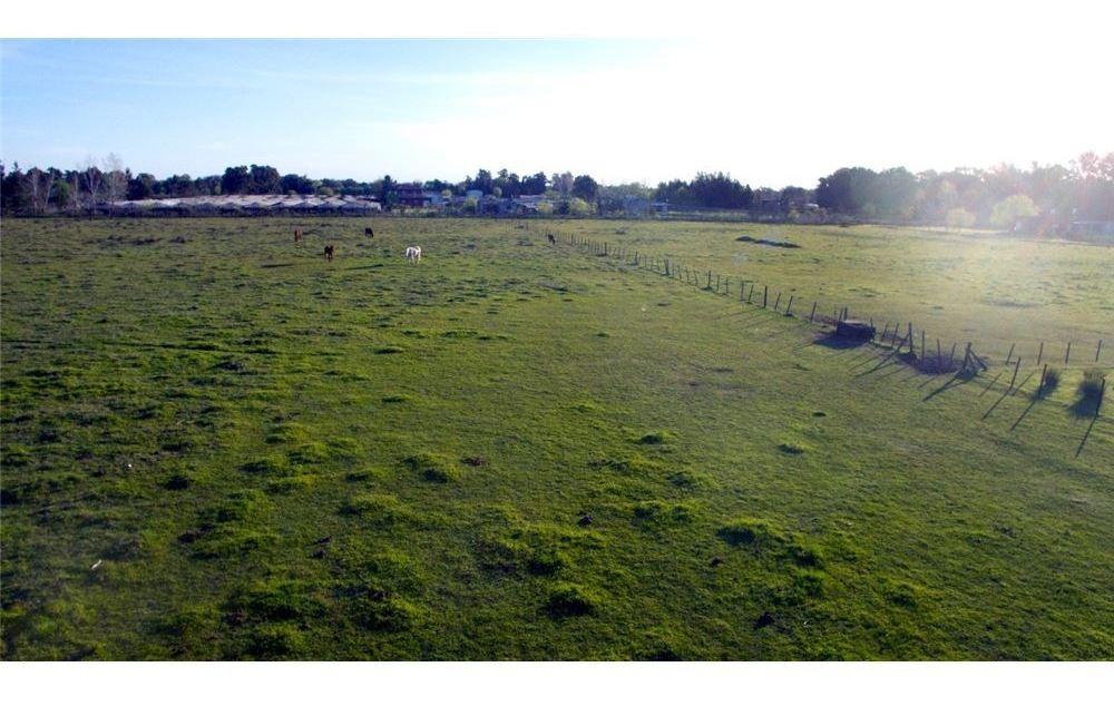 fracción en venta de 2 hectáreas en abasto