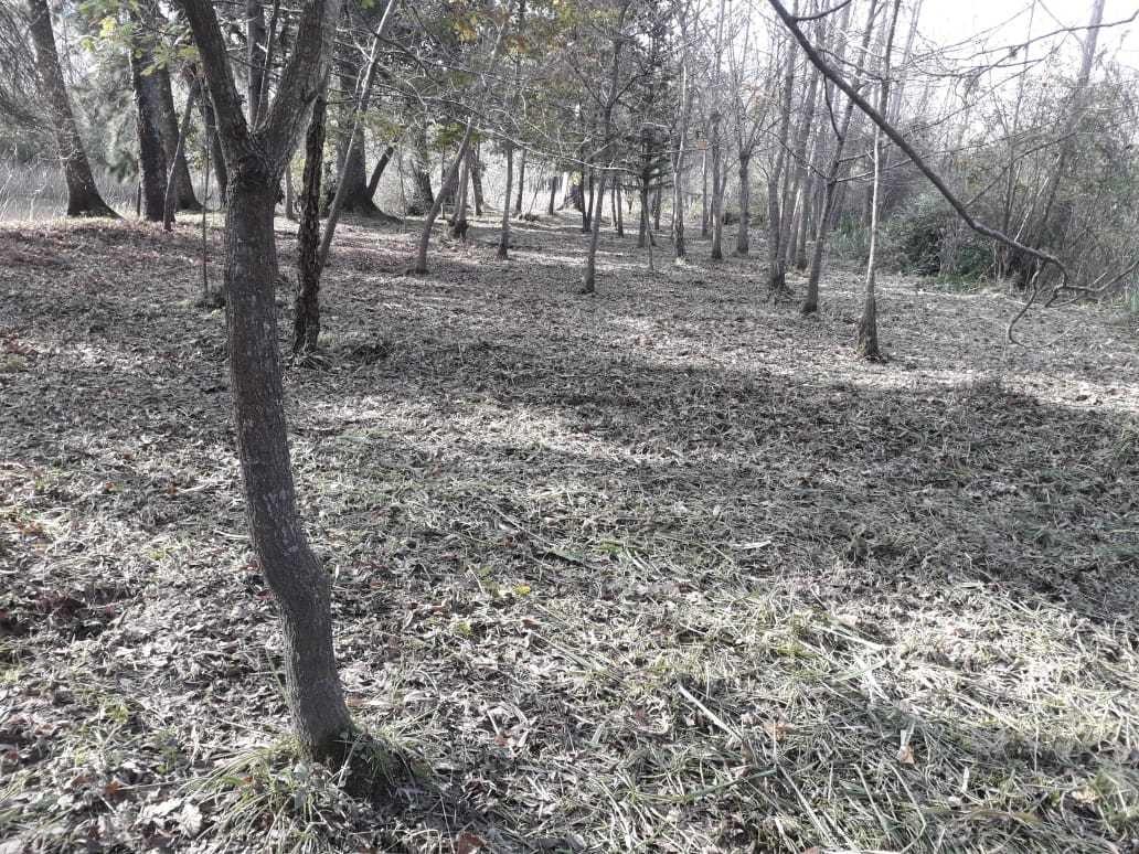 fracción en venta delta tigre- arroyo durazno- isla edith