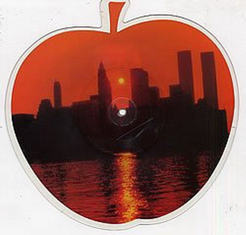 frank sinatra new york new york vinilo picture disc + envio
