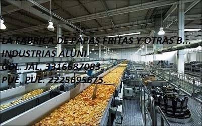 franquicias la fabrica de papas, plátanos y más botanas