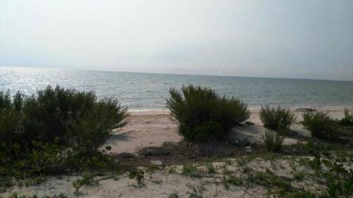 !frente de playa celestun!