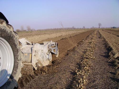 fresadora - destoconador - triturador de raices