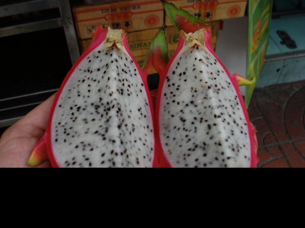 f6f509a054991 Fruta Del Dragon Pitaya Pack Semillas Seleccionadas -   5.000 en ...