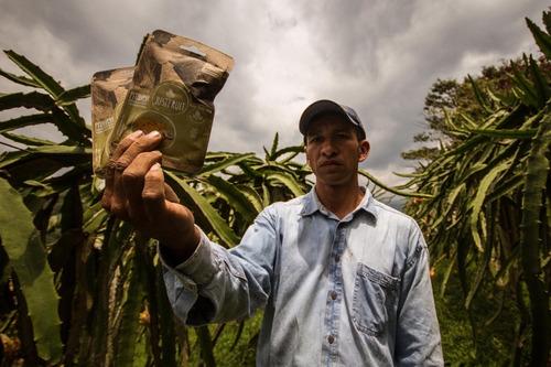 fruta deshidra orgánica fruandes pitahaya x 30gr  paq x 12