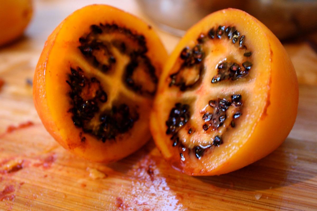 fruta tamarillo red 05 sementes importadas r 10 00 em mercado livre rh produto mercadolivre com br fruta importada a mexico frutas importadas a españa