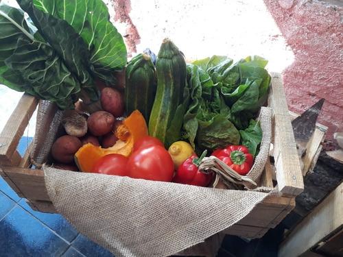 frutas y verduras a domicilio / delivery talca