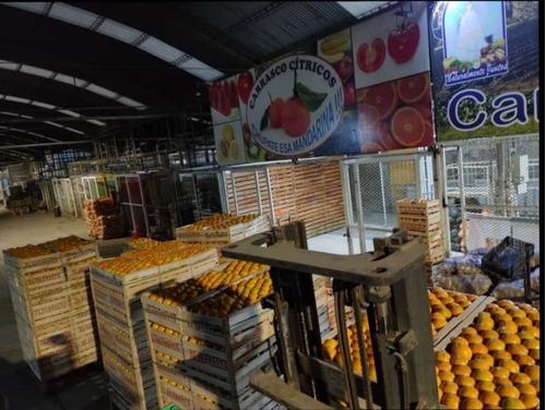 frutas y verduras venta-envíos