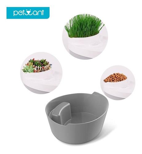 fuente de agua, bebedero, comedero, gatos y perros, petwant.