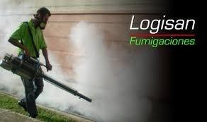 fumgadora  pol,809-327-7880 829-534-1717