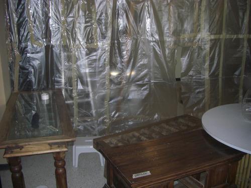 fumigación con camara de gas ( termitas polilla comejen )