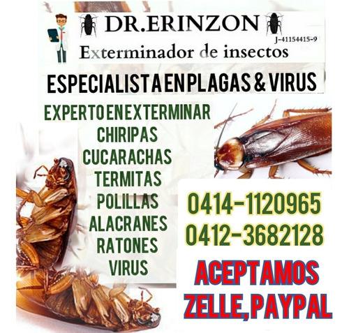 fumigación contra garrapatas, pulgas, cucarachas, chinches