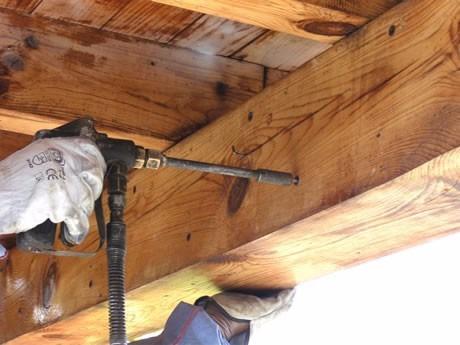fumigacion contra polilla termita camara gas inyeccion