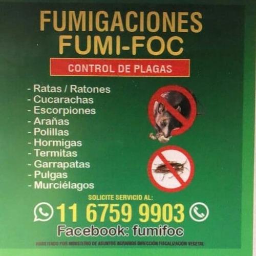 fumigación. control de plagas